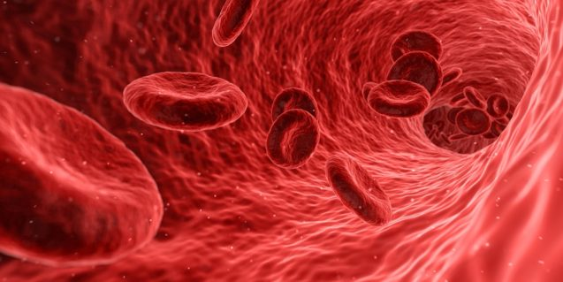 Nivelul plasmatic de factor neurotrofic derivat din creier la femeile cu dureri pelvine – un potential indicator pentru endometrioza? (studiu)